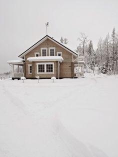 Tarja's Snowland: Talvi täällä mäellä   Snowland