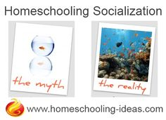 Homeschool socialization myth vs reality