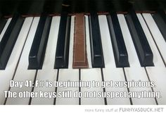 """Break Me Off Another Piece of That Piano Key - Funny memes that """"GET IT"""" and want you to too. Get the latest funniest memes and keep up what is going on in the meme-o-sphere. Music Jokes, Music Humor, Funny Music, Orchestra Humor, Funny Pictures With Captions, Funny Captions, Funny Pics, Funny Memes, Awesome Captions"""