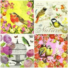4 x Single Luxury Paper Napkins for Decoupage and Craft Vintage Birds Mix | eBay
