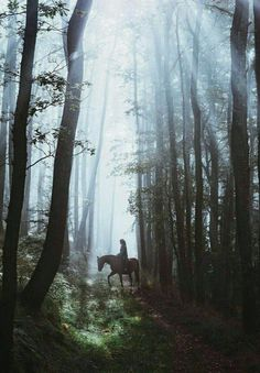 """""""A world that was no more"""" Tolkien about Lothlorien"""