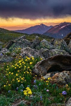 Trail Ridge Road, Rocky Mountain National Park photography | colorado photography | nature | hike | colorado hike | Schomp MINI