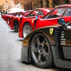 Line up of Ferrari F40 's!