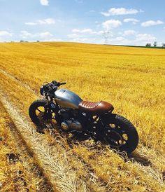 Field  #RAUR #rideasyouare #BABILA #motorcycles #❤️