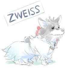 Zweiss RWBY