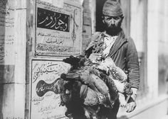 Horoz satıcısı