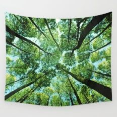 Looking up in Woods Wall Tapestry