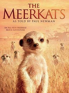 The Meerkats Amazon Instant Video ~ Paul Newman, https://www.amazon.com/dp/B00856Z5ZQ/ref=cm_sw_r_pi_dp_xs_iPraAb3RFYR5Q