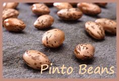 Dried Pinto beans make a wonderful Texas soup with salt pork and onions and…