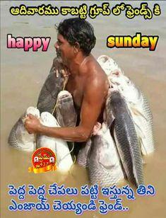 Sunday Images, Happy Sunday