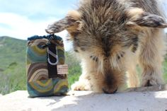 Dog Treat Bag Pouch with Carabiner & Belt by MountainUrsusDesigns, $19.00
