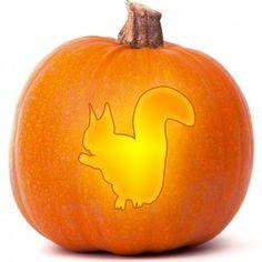 Squirrel Pumpkin Carving