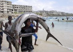 Fishing captures are a major resource for Mogadishu's economy. The Fishing Industry brings in a great amount of wealth.