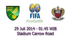 Prediksi Bola Norwich Vs Nice 29 Juli 2014