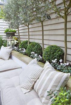 Une terrasse italienne avec une haie d'oliviers et de buis