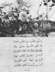 من القلب ❤ My addiction for you was not a choice. Beautiful Arabic Words, Arabic Love Quotes, Life Quotes In English, Nice Poetry, Laser Tag, Arabic Poetry, Paper Architecture, Inspirational Poems, Beautiful Nature Wallpaper