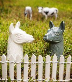 Accoutrements Llama Salt and Pepper Shakers - Spice things up with a couple of table llamas.