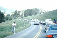 A bear watch and  traffic stops