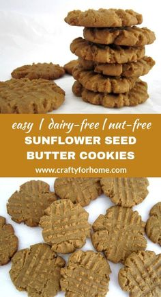 Sunflower Seed Butter Cookies | Easy nut-free and dairy-free sunflower seed butter cookies for the holiday season or any occasion. #sunbuttercookies #nutfreecookies #dairyfreecookies #sunflowerbuttercookies #christmascookies for full recipe on www.craftyforhome.com Sunflower Seed Butter Recipes, Sunflower Butter, Sunflower Seeds, Nut Free Cookies, Keto Cookies, Almond Cookies, Dairy Free Recipes, Easy Recipes, Gluten Free
