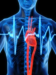 Arginine for Possible Heart, Artery and Cold Support