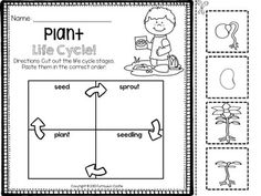a plant 39 s life cycle a cross curricular unit plant life cycles life cycles and life. Black Bedroom Furniture Sets. Home Design Ideas