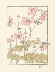 "The Japanese Anemone - Jeannie Foord - ""Decorative Flower Studies"", Pochoir Prints, 1901."
