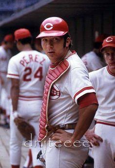 "Johnny Bench ""The Big Red Machine"" Cincinnati Reds Baseball, Baseball Star, Baseball Boys, Baseball Players, Baseball Wall, Baseball Photos, Cincinnati Restaurants, Baseball Classic, Johnny Bench"
