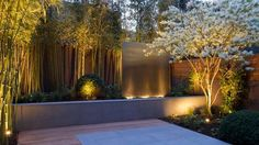 garden Seat planters and outdoor fireplace. with garden lighting. jardin Feng Shui avec terrasse en bois, projecteurs et bambou Modern Landscaping, Outdoor Landscaping, Landscaping Jobs, Landscaping Software, Terrace Garden, Garden Spaces, Court Yard Garden Ideas, Garden Seat, Indoor Garden