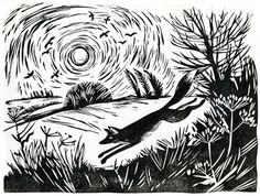 """Celia Hart: """"A fox broke cover"""" (via Animalarium: Foxes Den). Really seems to capture the countryside on an early winter morning. Art And Illustration, Botanical Illustration, Linocut Prints, Art Prints, Block Prints, Linoprint, Fox Art, Woodland Creatures, Tampons"""