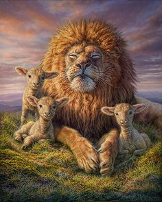 Lion And Lamb Wildlife Fine Art Pictures Sofa Throw Pillows, Decorative Throw Pillows, Lion And Lamb, Wildlife Paintings, Wall Paintings, Lion Of Judah, Lion Art, Christian Art, Christian Quotes