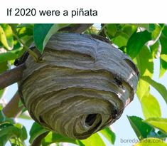 People Are Posting If 2020 Was A… Memes, And Here Are 81 Of The Most Accurate Ones