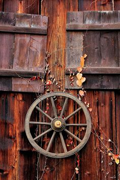 """A Shack's Life,"" by _neb, via Flickr -- ""This is a front of a wooden shack/hut located in the Austrian alps near my home. The wild and colorful plants are growing everywhere along the boards. This front to the south got an extra decoration: an old wooden wheel. The sun colored this front in different tones of brown. Starting from the window shutters to each single board."""