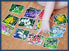 игра на развитие памяти весна