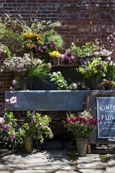 Kinfolk Magazines Flower Pot-Luck | Amy Merrick