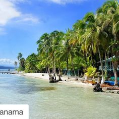 Cayo Carenero.  Careening Cay. Bocas del Toro Panamá. #maravillasnaturales #naturalwonder  #Repost @visitpanama  Have you already choose you next tourist destination? The summer has just started here!  #Panama #VisitPanama #CareneroIsland #BocasdelToro #Travel #Trip #TravelPanama #tasteintravel #wonderfulplaces #beautifuldestinations #beautifulplaces #bestoftheday #bestvacations #igers #igbest #instagood #instamood #love #instatrip #lonelyplanet #bbctravel #photooftheday #pictureoftheday