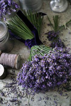 lavender tied with velvet ribbon.