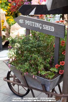 Beautiful old metal wheelbarrow with Potting Shed sign