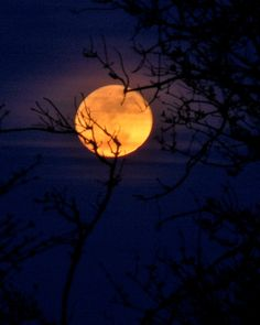 Spring Equinox full moon