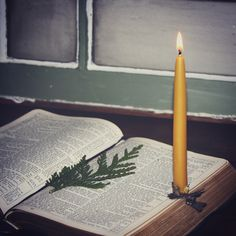 Christmas Candles, holiday decor, beeswax candles, bible & boughs