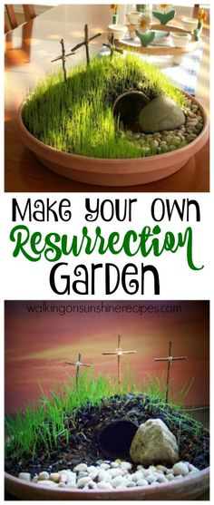 Learn how to make your own DIY Resurrection Garden from Walking on Sunshine Recipes.