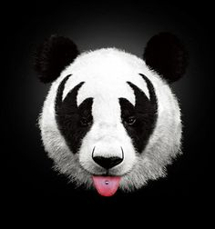 Kiss of a Panda, by Robert Farkas
