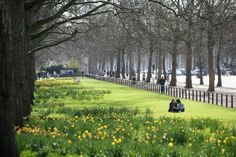 Green Park and Constitution Hill in springtime.