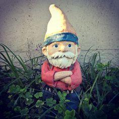 Hmmmuph Gnome