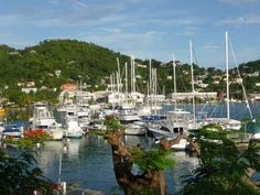 Travel & Adventures: Grenada. A voyage to Grenada, Caribbean Islands - St. George's, Gouyave, Grenville, Victoria, Saint David's, Sauteurs, Hillsborough...