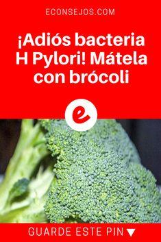 Bacteria h pylori | ¡Adiós bacteria H Pylori! Mátela con brócoli | Algunos estudios apuntan que los brotes de brócoli son el mejor aliado contra la bacteria H. Pylori. Descubra por qué.