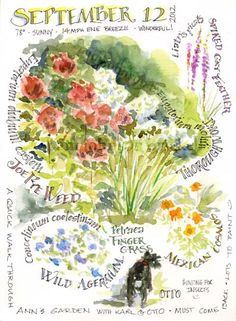 Sketching in Nature: A Garden Sketch ~ artist Pam Brickell.  What's in bloom in September, the names of the plants, & the weather that day.  Goal :: sit outside & do this at least once a month!  #art #journal #watercolor