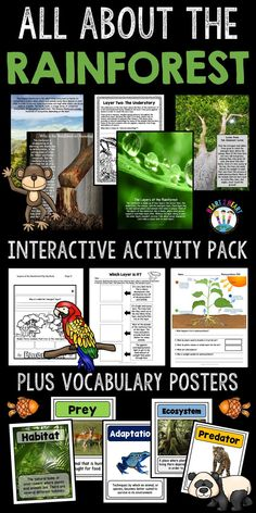 Learning about the Rainforest has never been so much fun! In this unit are 12 pa. Rainforest Activities, Rainforest Animals, Amazon Rainforest, Summer Activities, Rainforest Project, Rainforest Theme, Weather Activities, Interactive Activities, Science Resources