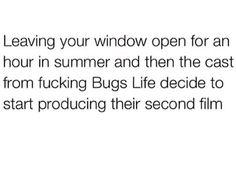 Fucking bugs!