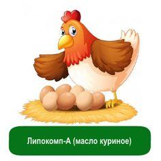 Липокомп-А (масло куриное), 25 грамм