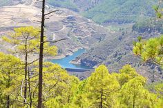 View from Tamadaba forest, Gran Canaria http://www.designxtravel.com/gran-canaria-part-2-nature-and-culture-treasures/